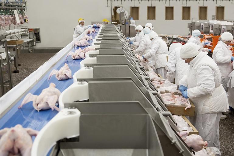 мираторг где выращивают скот производство